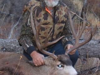 5 x 5 Idaho Mule Deer - Middle Fork of the Salmon River - Frank Church Wilderness Idaho Unit 26