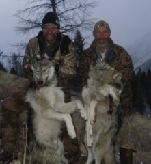 River of No Return Wolf Hunt on the Middle Fork of the Salmon River - Idaho Wilderness Company - Outfitter Steve Zettel