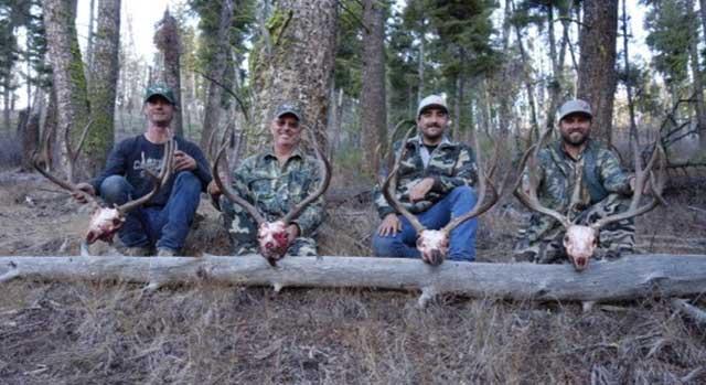 Four Mule Deer Trophies taken during a Rut Hunt in Idaho 26 - Outfitter Steve Zettel