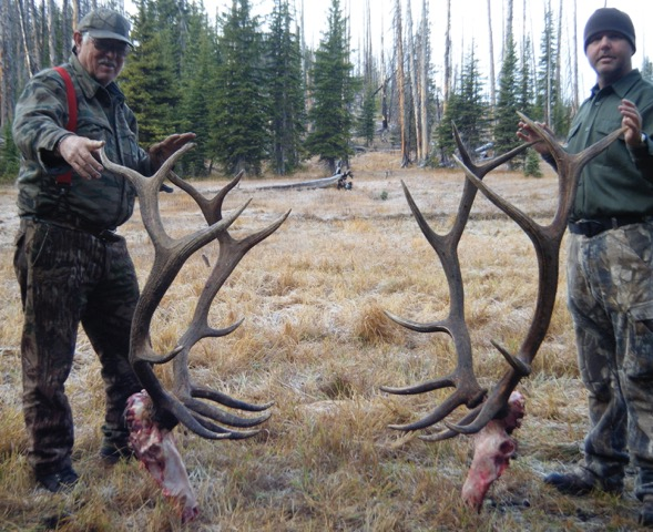 Trophy Royal Bull Elk - Frank Church River of No Return Wilderness - Idaho Units 20A, 26 and 27 - Idaho Wilderness Company - Outfitter Steve Zettel
