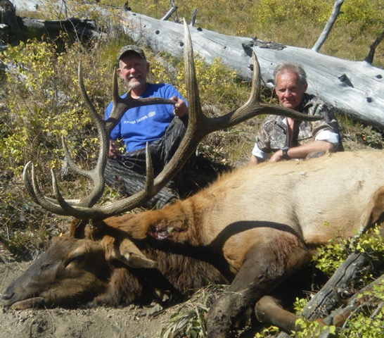 Royal Idaho Unit 27 Bull Elk - Idaho Wilderness Company - Frank Church River of No Return Wilderness Area