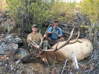 Bull Elk taken in Idaho Unit 26 - Frank Church Wilderness - Outfitter Steve Zettel