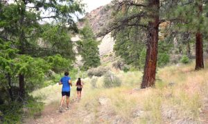 Trail Running in the Wilderness